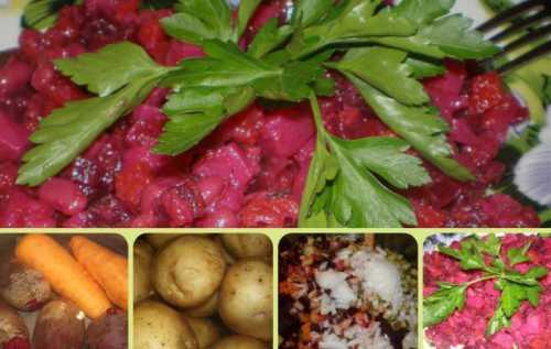 салат из щавеля: 8 простых и вкусных рецептов