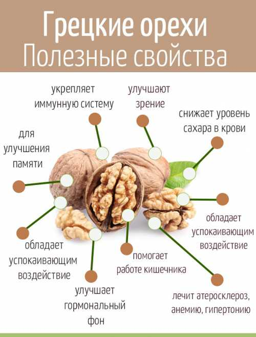 калорийность сыра сулугуни: какая она
